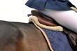 Auf dem Pferd reiten - 82465281