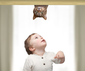 little boy playing with a cat