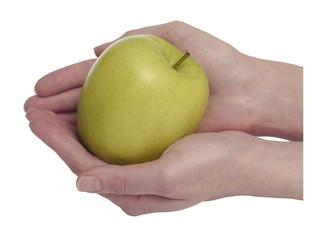 Зеленое яблоко в руках на белом фоне