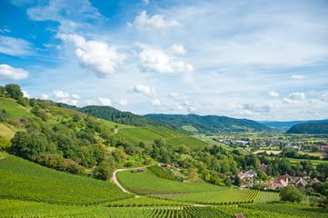 Kinzigtal mit Weinberglandschaft, Gengenbach