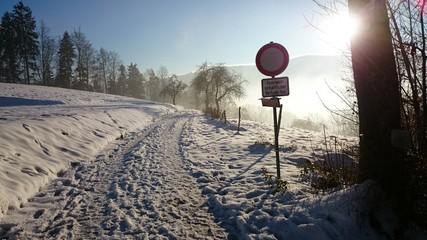 Black Forest Winterland
