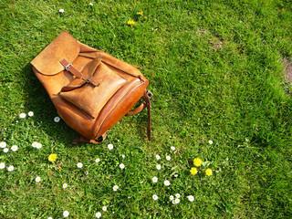 Brauner Lederrucksack auf Frühlingswiese