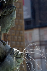 Italia,Emilia Romagna,Bologna,Fontana del Nettuno.