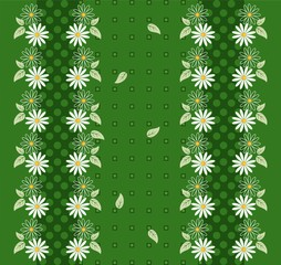 Flower background with daisies and borders
