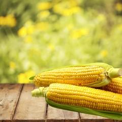 Corn. IMG_2626.JPG