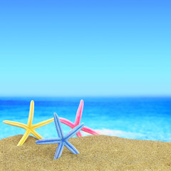 Colorful starfishes on the beach in front of a blue horizon