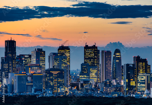 Póster Bella silueta del horizonte de Tokio en el crepúsculo