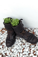 old army boot planters with lavender