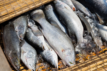raw fish at asian street market