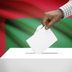 Ballot box with national flag on background series - Maldives
