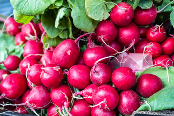 Bunches of radish at city market square