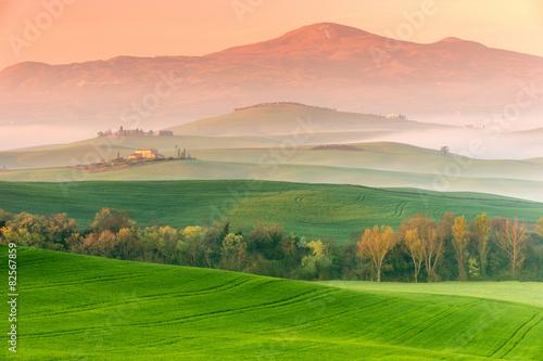 Zdjęcia na płótnie, fototapety na wymiar, obrazy na ścianę : Tuscany Landscape