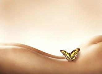 Sensitive and delicate body