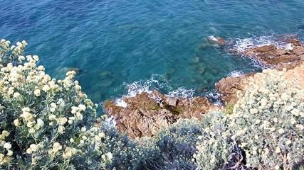 Punta Ala, Tuscany, Italy