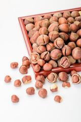 dried hazelnut