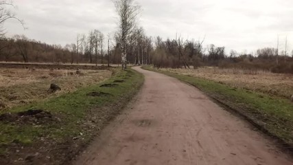 POV of riding bicycle in empty wild spring park, prores 422