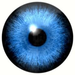 Illustration of Caucasian blue eye iris, light reflection
