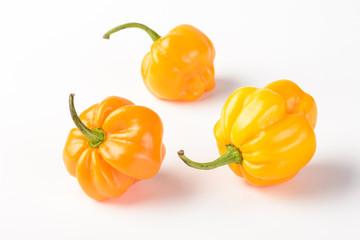 yellow emperor pepper