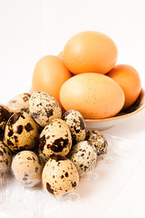 Chicken egg and quail eggs
