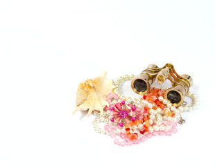 Jewelry and Accessories in sea shell on a white background