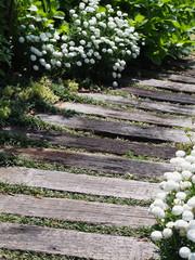 庭の中の小道