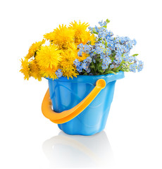 Bouquet of dandelions and forget-me in plastic bucket
