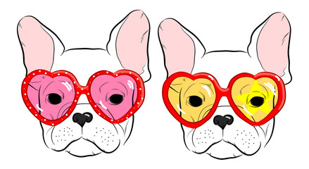 set of cute muzzle French Bulldog in heart glasses