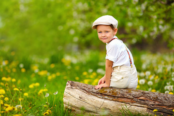cute young boy sitting on stump in spring garden