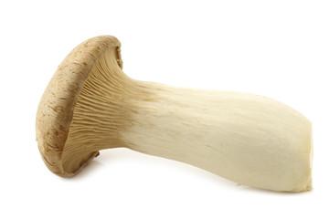 King oyster mushroom (Pleurotus Eringii) on a white background