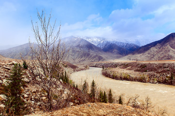Rambunctious river in Altai mountains in spring