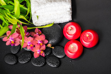 top down spa concept of blooming twig red orchid flower, phalaen