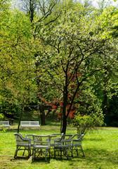 lawn furniture in garden