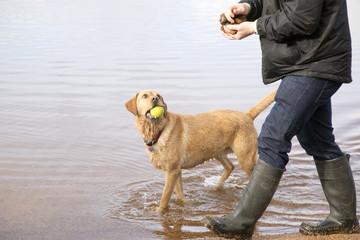 Man walking dog in Scottish Loch