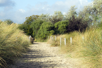 Sandweg auf der Ostseeinsel Rügen.