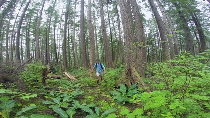 Wide angle man hiking Alaskan forest