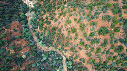 Dry creek bed in the desert