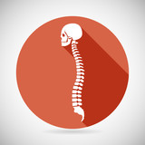Fototapety Skull and Spine Icon Symbol Concept Flat Design Vector