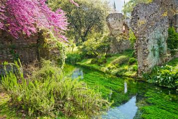 The Garden of Ninfa - Latina Italy