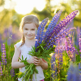 Cute preschooler girl in blooming lupine field
