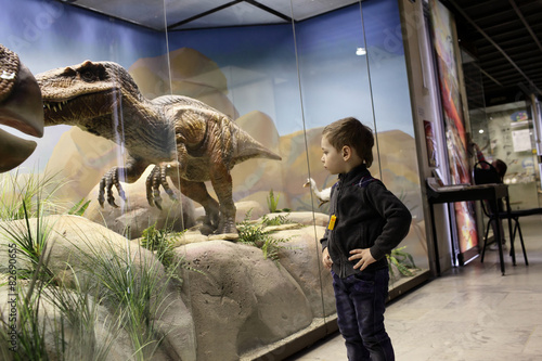 Boy looks at a dinosaur Poster
