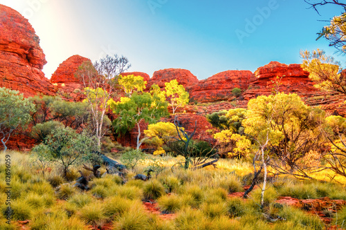 Naklejka Australien Outback