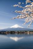 Fujiyama in Japan Kawaguchiko im Frühling