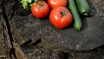 Picnic vegetables on stump