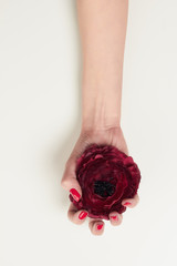 hand with red manicure and red flower
