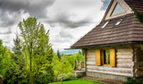 Beautiful log cabin in forest - 82698476