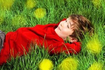 dreams on a grass