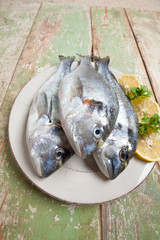 Three fishes (Sparus aurata) on a plate set on wooden table