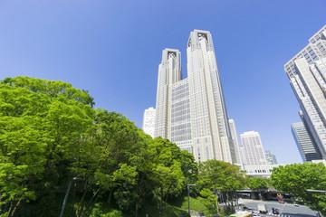 東京都庁と新宿高層ビル群 快晴青空 新緑