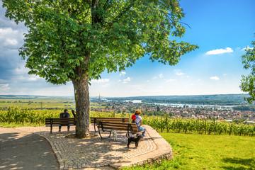 Spaziergänge im Rheingau