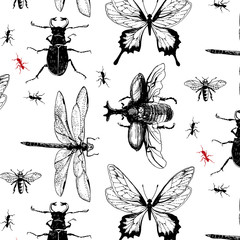 Various bugs in the pattern